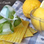 Cubetti di ghiaccio limone e menta